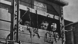 Read more about the article Holocaust Atrocities